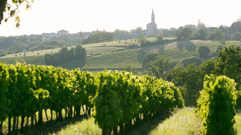 Bordeaux 2014: scores in bottle. (Article from Liv-ex Blog)
